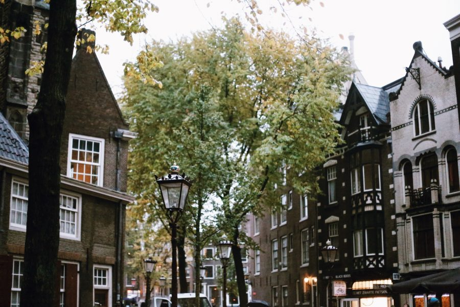 City-Amsterdam-Walking-Tour-Guided