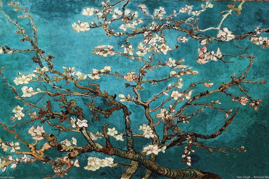 Van-Gogh-Amsterdam-Tour-Museum-Rondleiding